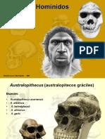 hominidae-1230814247423758-2
