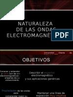 Naturalezaondaselectromagneticas 100221043610 Phpapp02 (1)