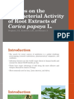 Studies on the Antibacterial Activity of Carica Papaya L. Root Extracts