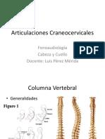 6.-Articulaciones Craneocervicales