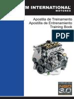 MWM NGD.pdf