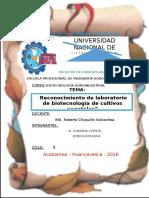informe de biotecnologia vegetal.docx