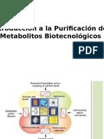 Introducción a la Purificación de  Metabolitos Biotecnológicos