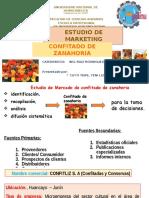 DIAPOSITIVA DE ESTUDIO DE  yeni.pptx