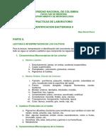 W_IDENTIFICACION_BACTERIANA II 14.pdf