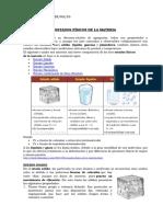 004 Estados Físicos de La Materia