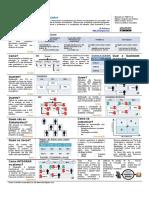 guia-para-planejamento-de-projetos-v5.pdf