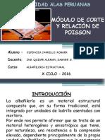 Albañileria Estructural - Presentación