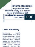 Presentasi Sistema Respirasi Dan Muskuloskeletal