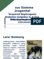 Presentasi Sistema Urogenital Dan Syaraf