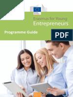 Erasmus programme for Entrepreneurs