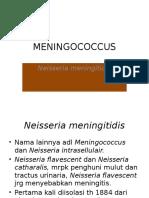 MENINGOCOCCUS.pptx