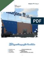 537f2fedd0ed3.pdf