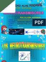 TA -PH - NYF  - BUSTINZA  LUZ  - 2015127512  u.ppt