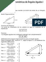 Razones Trigonométricas de Ángulos Agudos I