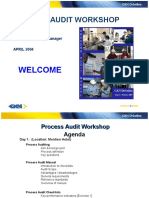 Process Audit Manual 030404
