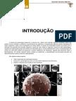 introdução - embriologia