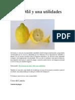 Limón Mil y una utilidades.doc