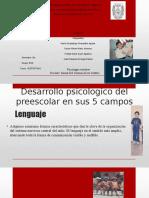 Desarrollo Psicologico Del Preescolar en Sus 5 Campos
