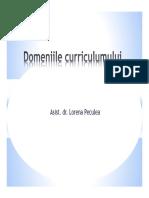 domeniile curriculumului