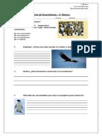 Guía de reemplazo - Ciencias Naturales - 4°