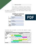 GUÍA PARA PERFIL DE CARGO.docx