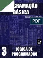 Programação Básica- Lógica de Programação