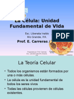 la-clula-1193242245512896-3.ppt