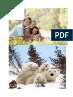 FAMILII  [imagini].docx