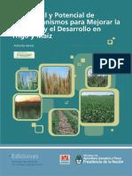 Microorganismos para mejorar la nutricion y desarrollo en trigo y maiz.pdf