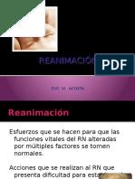 Reanimacion RN