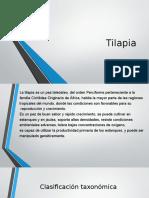 Cultivo de la tilapia.pptx