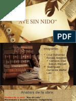 Ave Sin Nido Edicion Final