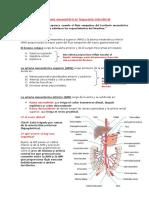 Apuntes III Parcial Urgencia y Emergencia- Gastroientestinal