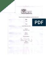 [P][W] MBA Diego Emilio Cruces Jugos naturales 24x7.pdf