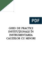 Ghid de Practici Institution Ale in Instrument Area Cauzelor Cu Minori