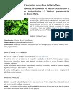 Medicina Natural_ Mastruz, Indicações e Tratamentos Com a Erva de Santa Maria