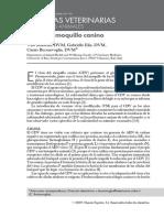 Virus del moquillo canino.pdf