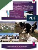 Diapositivas-de-Exposicion-Actividad-Ganadera-de-la-Region-Puno-Realidad-Nacional.pptx