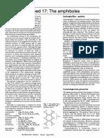 amphiboles.pdf