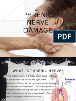 Phrenic Nerve Damage