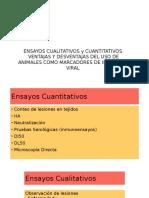 ENSAYOS CUALITATIVOS y CUANTITATIVOS.pptx