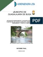 informe final guadalajara FEB 28 2005.pdf