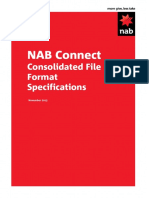 NAB Connect Consolidated File Format Specification_V0.05