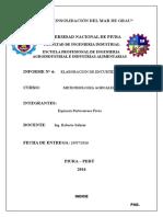 Informe Encurtidos Microbiologia Alimentaria