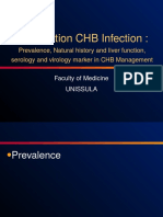 1. 3. Introduction CHB in Indonesia