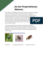 Hygiene Lalat Dan Pengendaliaanya Di Industri Makanan