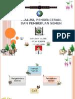 EVALUASI_PENGENCERAN_DAN_PEMBEKUAN_SEMEN.pptx