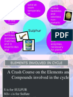 Sulphur Cycle