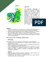 ECOAUDITORIAS.pdf